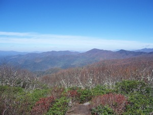 Craggy Gardens & Pinnacle 2013 038