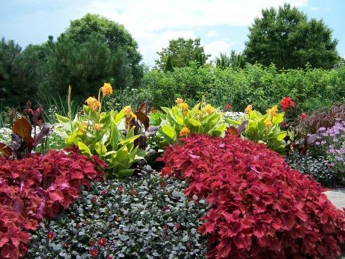 Arboretum 2013 017