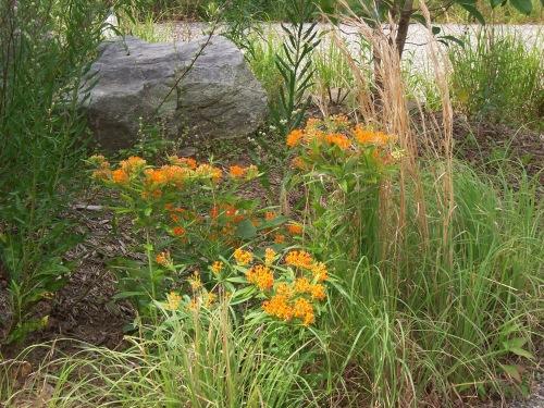 2012 Botanical Garden 019